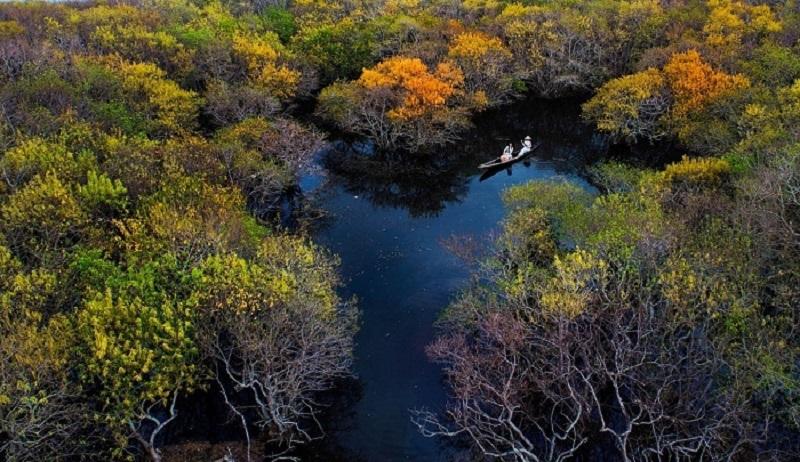 Check in rừng ngập mặn Rú Chá